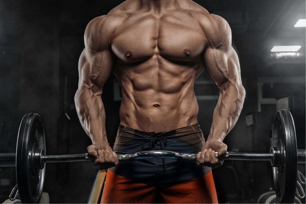 Everything About SARMs